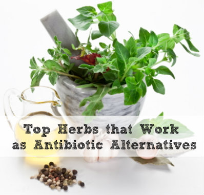 Try Natural Antibiotics