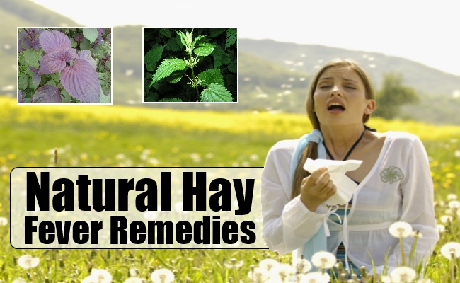 Natural Hayfever Remedies#3